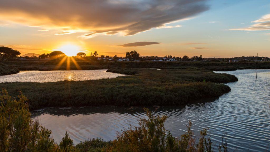 La réserve naturelle de Herdade da Mourisca au soleil couchant