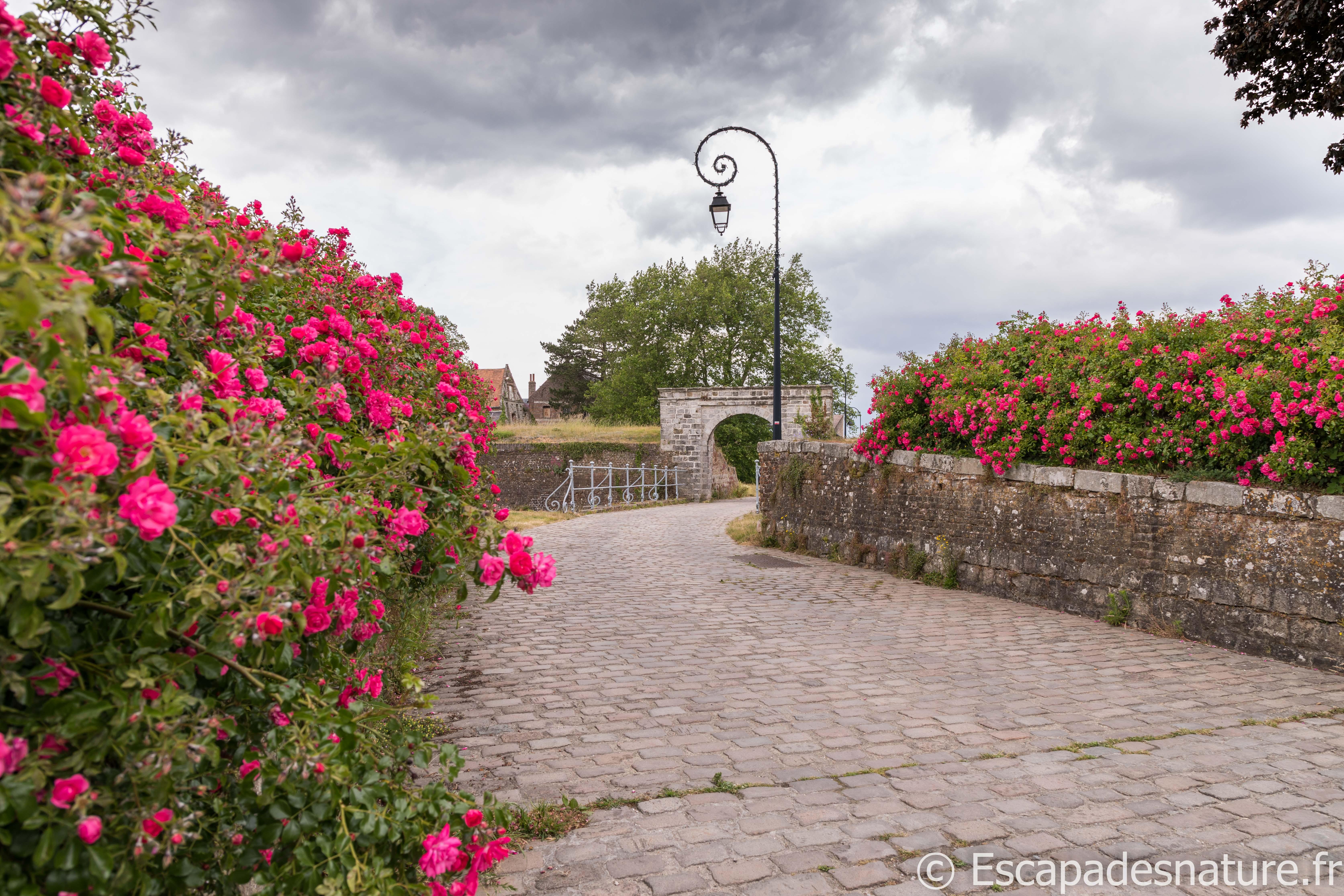 LA CITE FORTIFIEE DE MONTREUIL-SUR-MER